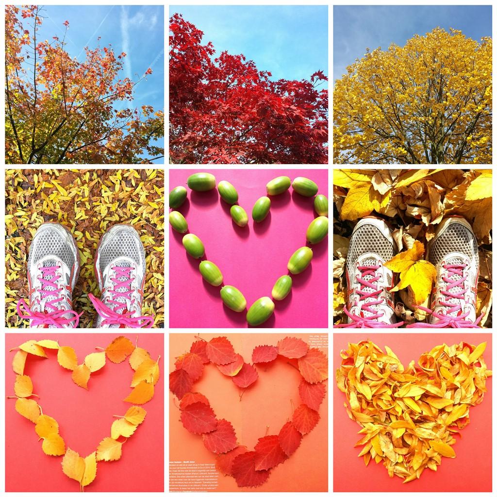Lichtpuntje 210 Inspiratie Zo mooi is de herfst