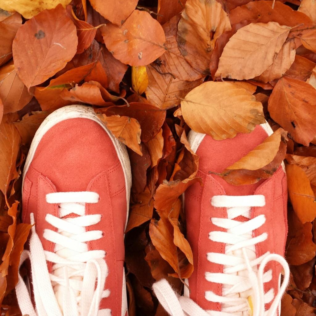 Inspiratie: zo mooi en kleurrijk is de herfst