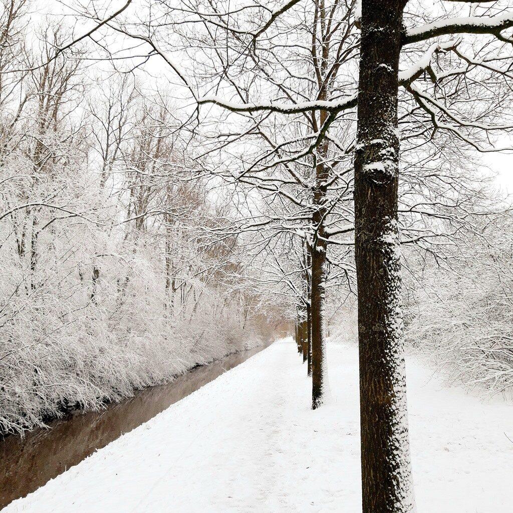 Inspiratie winter 2021 - Natuur - sneeuw