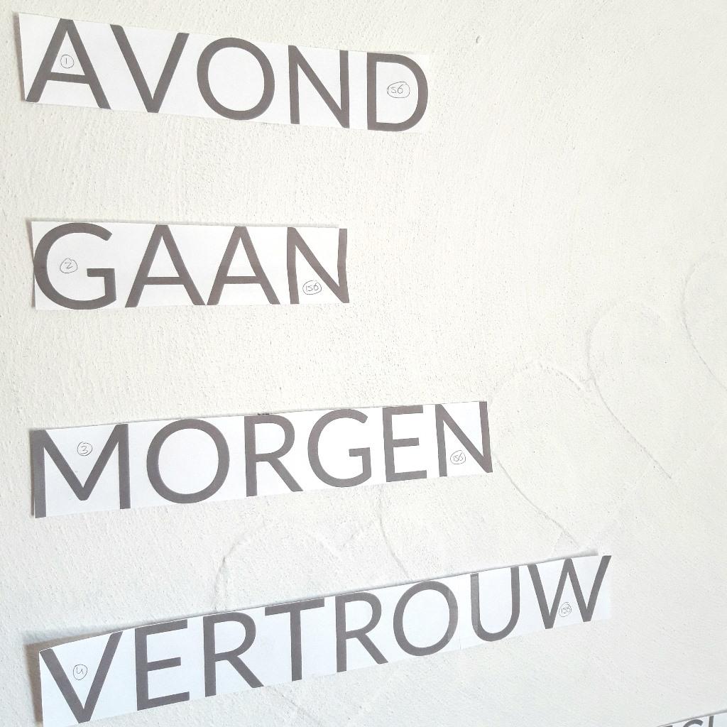 Woorden testen op doek - Marloes van Zoelen