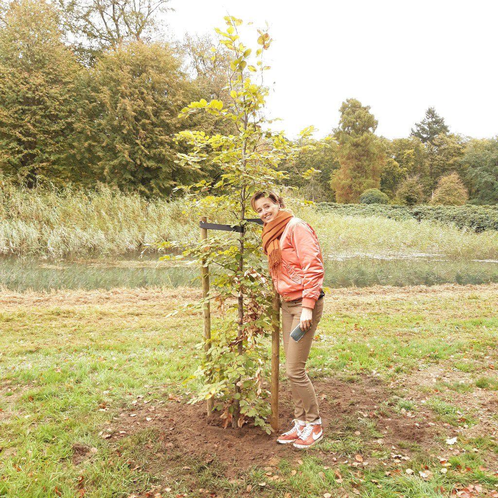 Tastbare herinnering overledene - voorbeeld herinneringsboom