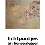 Gratis e-book Lichtpuntjes bij hersenletsel